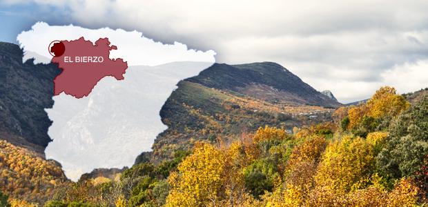 bierzo-mapa